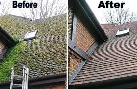 & Roof Moss | Moss Removal and Prevention memphite.com